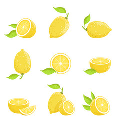 Lemon with slices fresh yellow fruit in cartoon vector