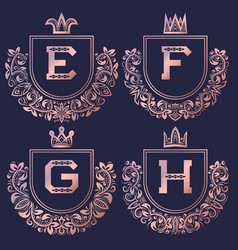 rose gold coat of arms set in baroque style vector image