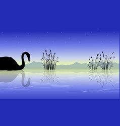 silhouette of swan on lake style collection vector image