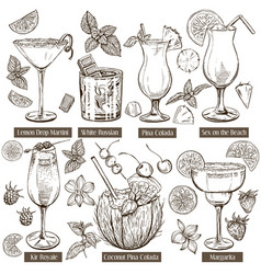 sketch set cocktails vector image