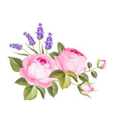 Spring flowers bouquet vector