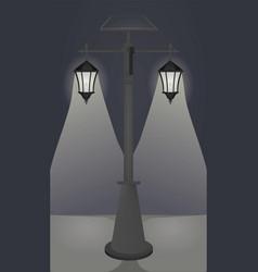 street lights on night vector image