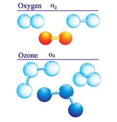 Molecule structures vector image