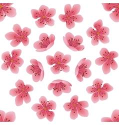 Seamless pattern with sakura flowers vector image