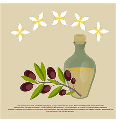 Organic olive oil Best quality olive flowers and b vector image vector image
