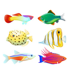 aquarium fish silhouette isolated on white icons vector image