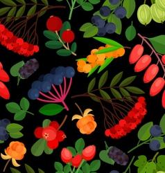 Berries Pattern Rowan Black vector image