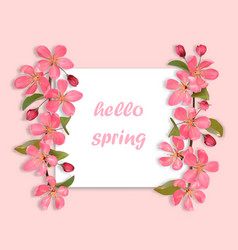Hello spring card with pink cherry blossom vector