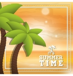 Palm tree and summer design vector image