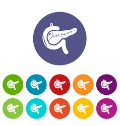 Pancreas icons set color vector