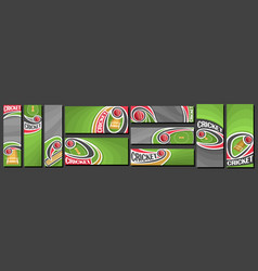 Set cricket banners vector