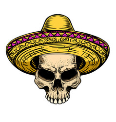 Skull in sombrero isolated on white background vector