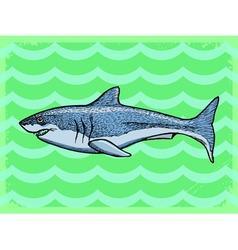 vintage grunge background with shark vector image