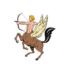 Centaur Bow Arrow Shooting vector image