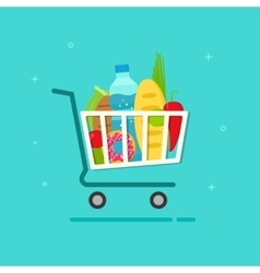 Grocery cart shopping trolley vector image vector image