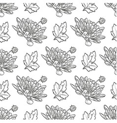 chrysanthemum seamless pattern vector image
