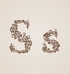 Decorated letter s vector image