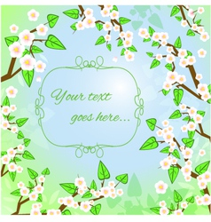 Decorative background with white blooming trees vector