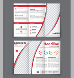 Design front and back booklet vector