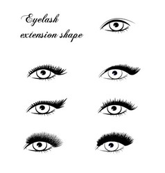 Eyelash extension shape vector