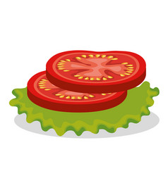 fresh slice tomatoes icon vector image