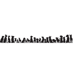 front view of dogs group standing or sitting vector image