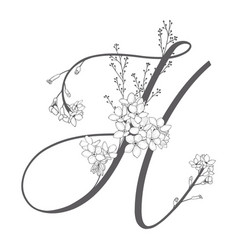 Hand drawn floral h monogram and logo vector
