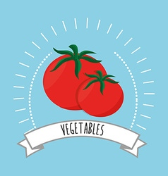 Healthy and natural food vector
