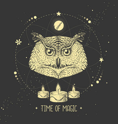 Modern magic witchcraft taros card with owl head vector