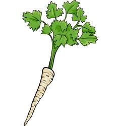 Parsley root vegetable cartoon vector