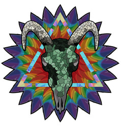 Skull of a bull on a colorful paint texture vector