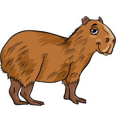 capybara animal cartoon vector image
