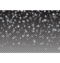 Falling snowflake Christmas Shining beautiful snow vector image