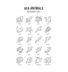 sea animals linear icons set turtle jellyfish vector image