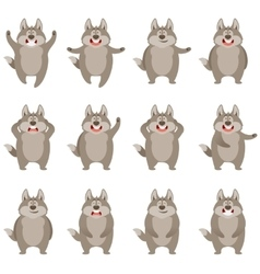 set flat wolf icons vector image