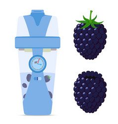 smart wireless bottle with blackberry berry vector image