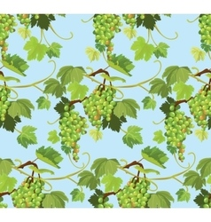 Seamless pattern with green grapes and leaves on vector image vector image