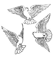 Three flying doves sketch set vector