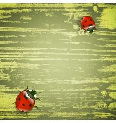 spring ladybirds vector image