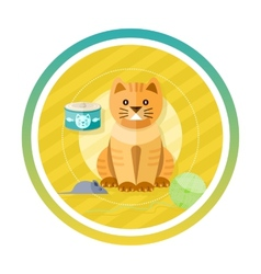 Adorable cat with different toys and elements vector image