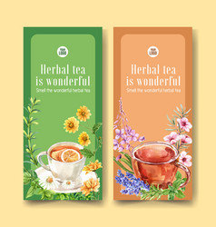 Herbal tea flyer design with chamomile and flower vector