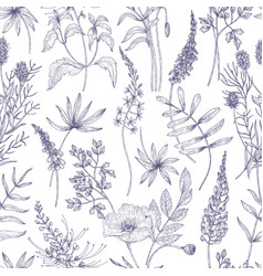 natural seamless pattern with wild blooming vector image