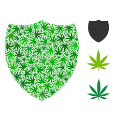 shield mosaic of marijuana vector image