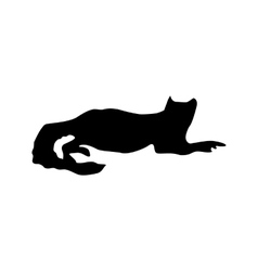 Meerkat black silhouette vector image