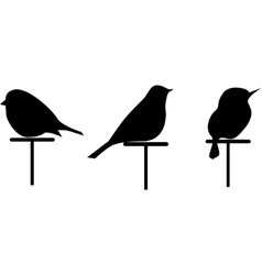 images silhouettes of 3 birds set vector image