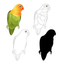 Parrot agapornis lovebird tropical bird natural vector