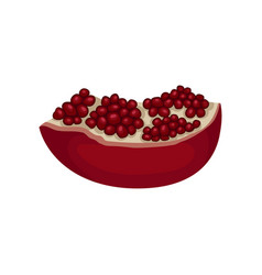 slice of pomegranate full of juicy seeds natural vector image