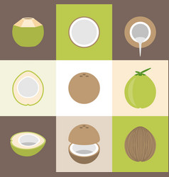 coconut icons set vector image vector image