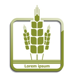 Agricultural wheat icon vector image vector image