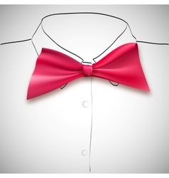 Bow tie on a background sketch the shirt vector image vector image